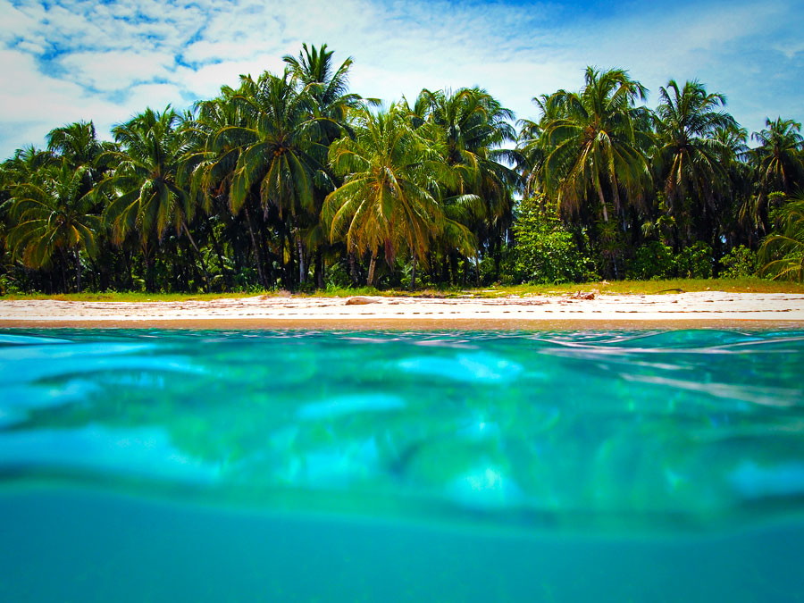 LIVE IN PARADISE:  3 Properties for sale in Bocas del Toro
